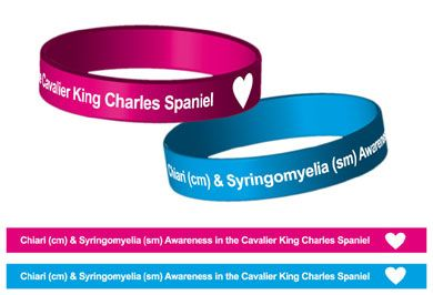 Syringomyelia Awareness Band